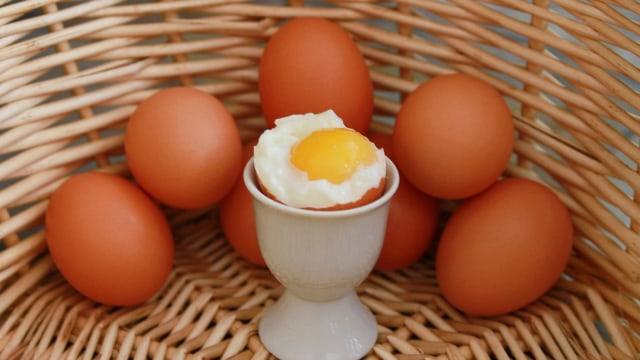 Efek Samping Makan Telur Rebus Setiap Hari Saat Diet, Begini Kata Ahli (97442)