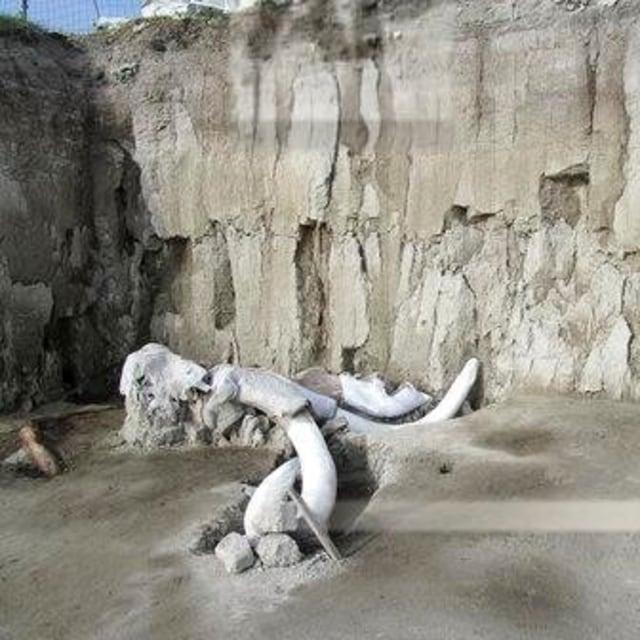 Lubang perangkap yang digunakan manusia memburu mammoth.
