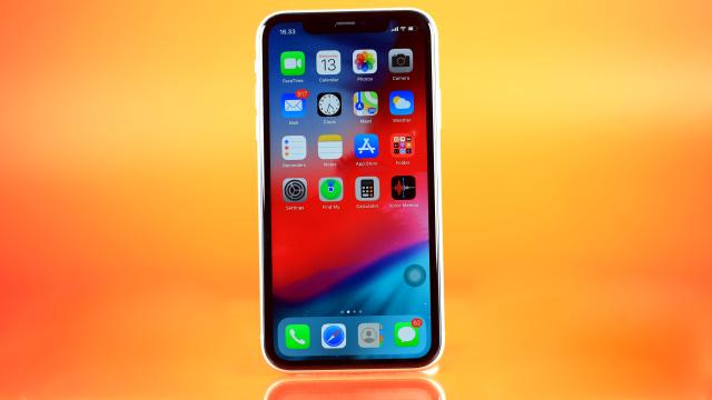 Apple Beri Servis Gratis Layar iPhone 11 yang Bermasalah, Ini Cara Klaimnya (24915)