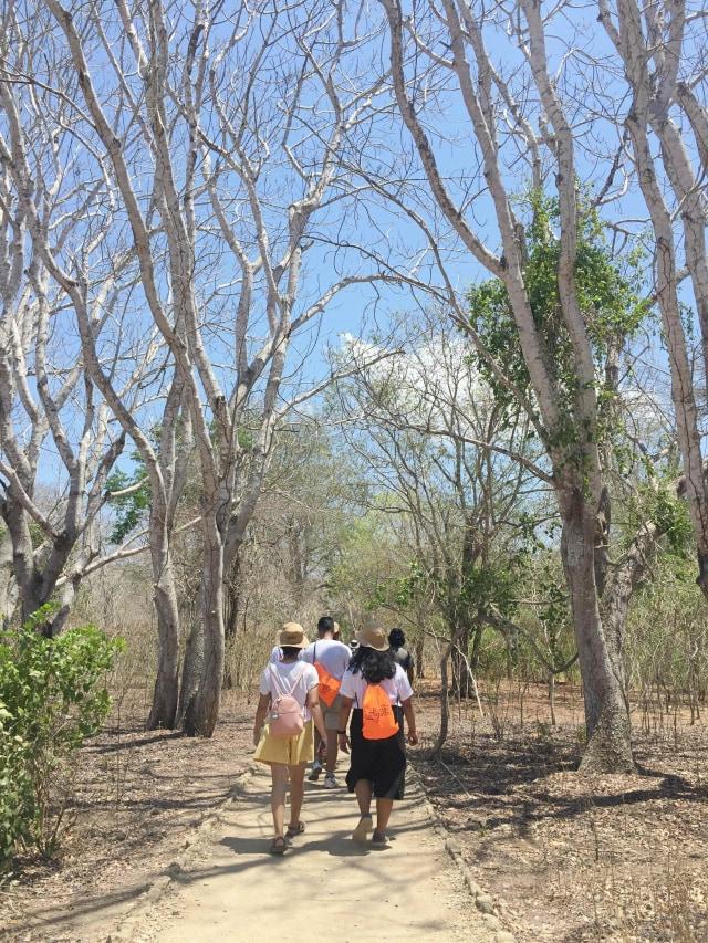 PTR, Taman Nasional Komodo, Labuan Bajo, Flores