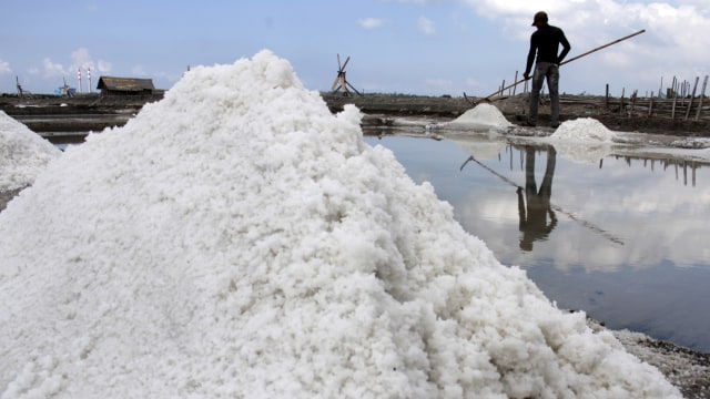 KKP Mau Swasembada dan Tekan Impor Garam, Apa yang Dilakukan? (47290)