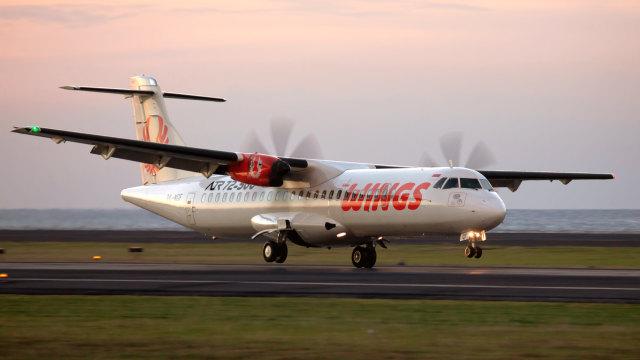 Alvin Lie soal Kopilot Wings Air Bunuh Diri: Lion Air Berlebihan (251849)