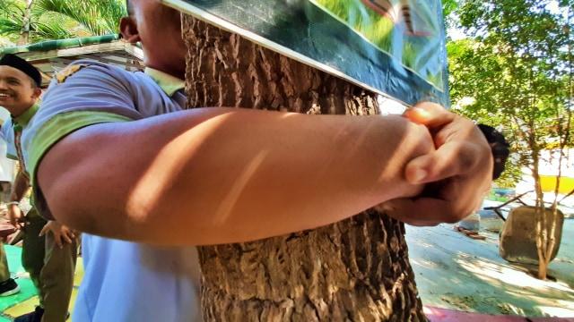 Memeluk Pohon: Merayakan Hari Pohon Sedunia ala Gorontalo (64895)
