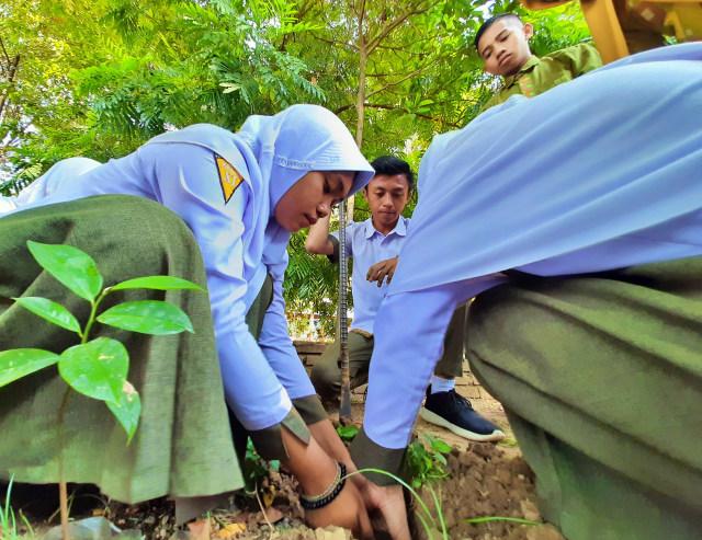 Memeluk Pohon: Merayakan Hari Pohon Sedunia ala Gorontalo (64897)