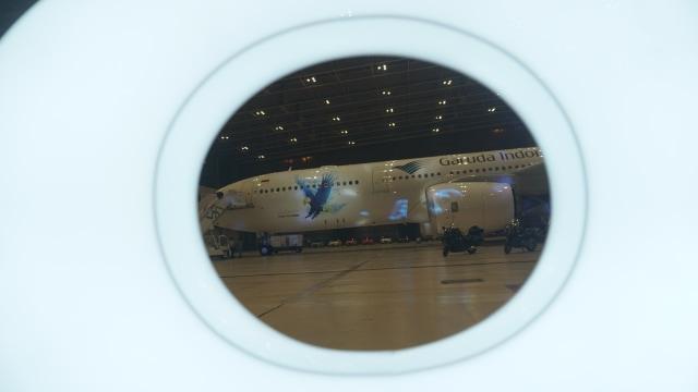 Direktur Operasi dan Teknik Dicopot Erick Thohir, Garuda Dalam Bahaya? (32230)