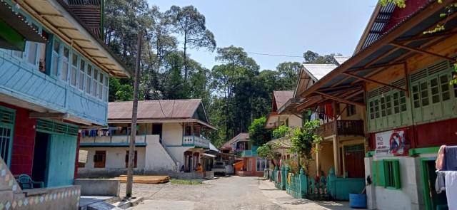 Mengunjungi Desa Pahmungan Penghasil Damar di Lampung (59353)