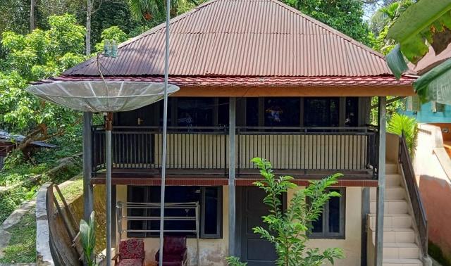 Mengunjungi Desa Pahmungan Penghasil Damar di Lampung (59355)