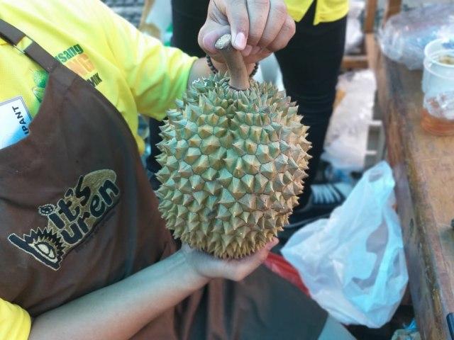 Durian Bawor.