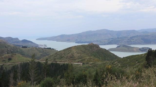 Taklukkan Fobia demi Ziplining Tertinggi, Terpanjang di Selandia Baru (224756)