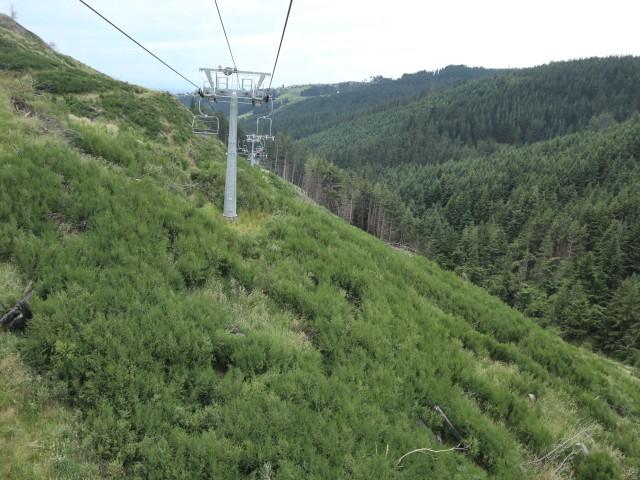 Taklukkan Fobia demi Ziplining Tertinggi, Terpanjang di Selandia Baru (224751)