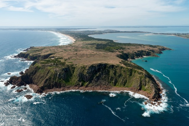 Menikmati Lekuk Mornington Peninsula Australia (36805)