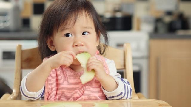 bayi makan buah