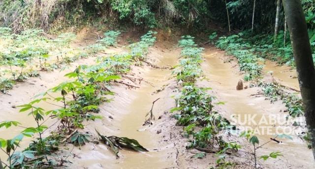 Banjir Lumpur dari Proyek Tol Bocimi Rusak Lahan Pertanian di Sukabumi (30951)