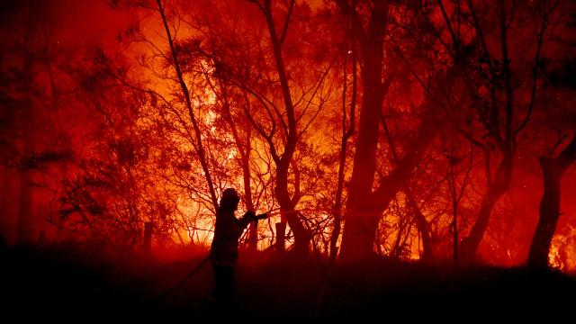 Foto: Duka Cita Jokowi Atas Kebakaran Dahsyat di Australia (134856)