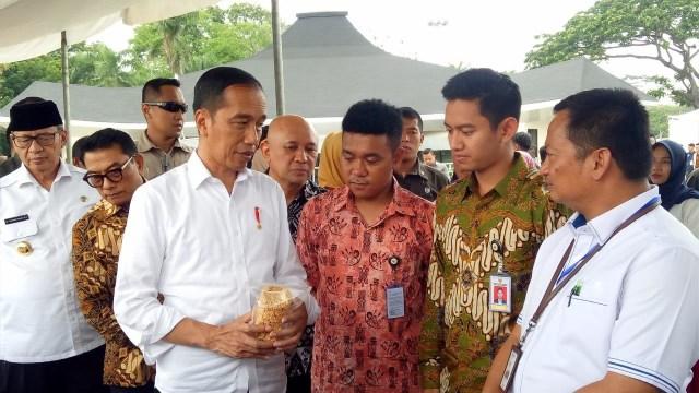Bio Stafsus Jokowi Billy Mambrasar yang Samakan Jabatan Setingkat Menteri (50036)