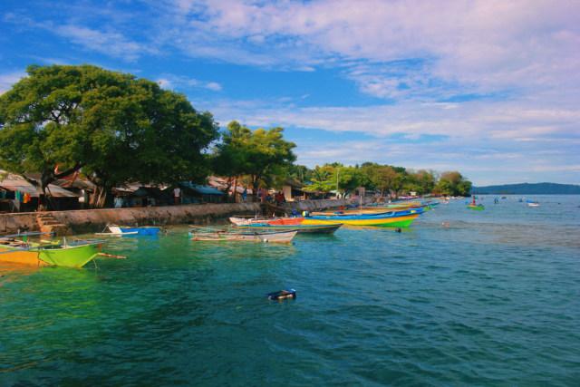 Tingkatkan Ekowisata, India Hadirkan Safari Lumba-lumba di Sungai Gangga (397981)