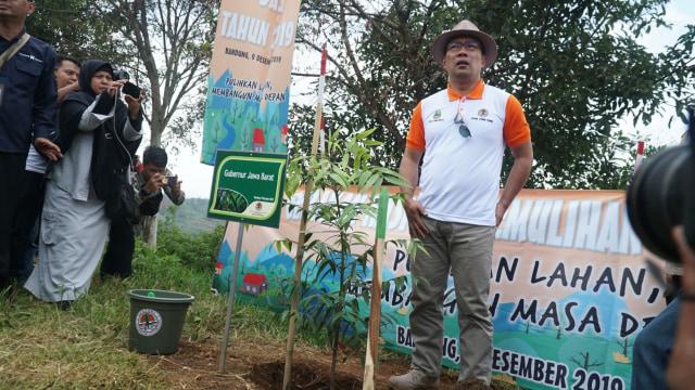Ridwan Kamil: Pasutri di Jabar yang Mau Cerai Harus Sumbang 100 Pohon (27738)