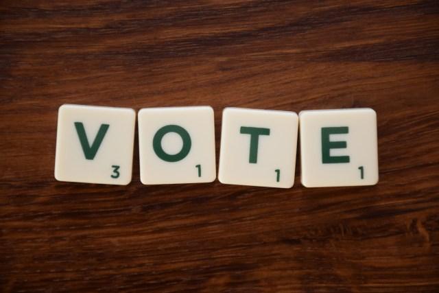vote-3932253_1920.jpg
