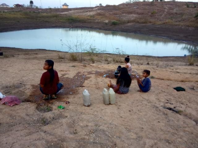 Manusia dan Ternak Minum Air Embung di Bonat, NTT  (69396)