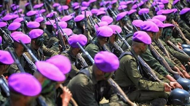 Kemendikbud: Mahasiswa yang Ikut Pendidikan Militer Bisa Jadi Perwira Cadangan (35302)