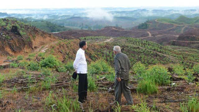 Langkah Jokowi Tunda Proyek Ibu Kota Baru Didukung Pimpinan DPR (142350)