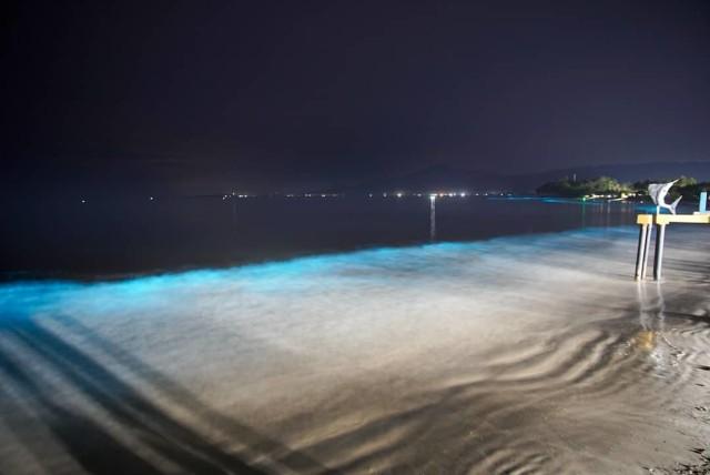 Melihat Fenomena Air Laut Bersinar di Pantai Pesisir Barat Lampung (977653)