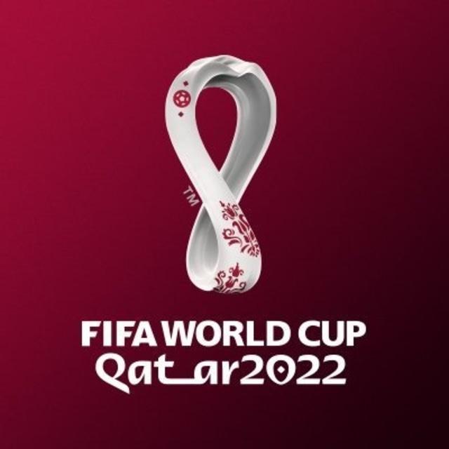 Piala Dunia 2020 potrait