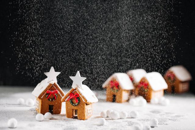 Khas Natal: Gingerbread Terkecil di Dunia, Lihatnya Pakai Mikroskop (4270)