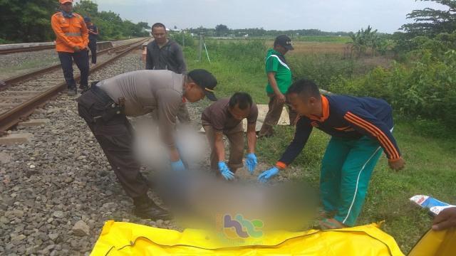 2019, 4 Orang di Bojonegoro Meninggal Dunia Tertabrak Kereta Api  (290841)