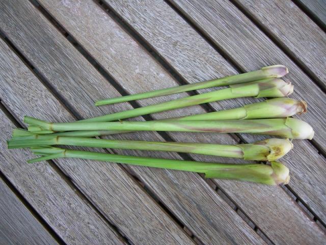 Bisa Jadi Hobi Baru, 7 Sayuran dan Rempah yang Dapat Ditanam Ulang di Rumah (311396)