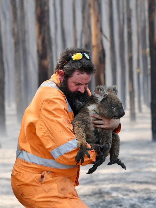 Foto: Duka Cita Jokowi Atas Kebakaran Dahsyat di Australia (134867)