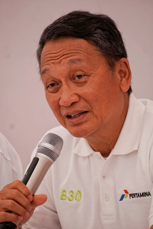 PNPB dan Investasi Sektor ESDM Gagal Capai Target di 2019 (320058)