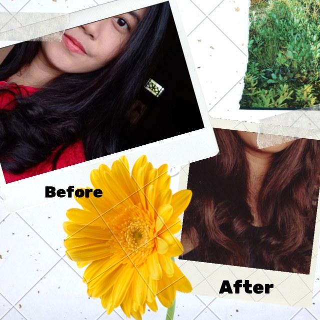 Review Garnier Ultra Color sachet, Berhasilkah di rambut hitam? (568246)