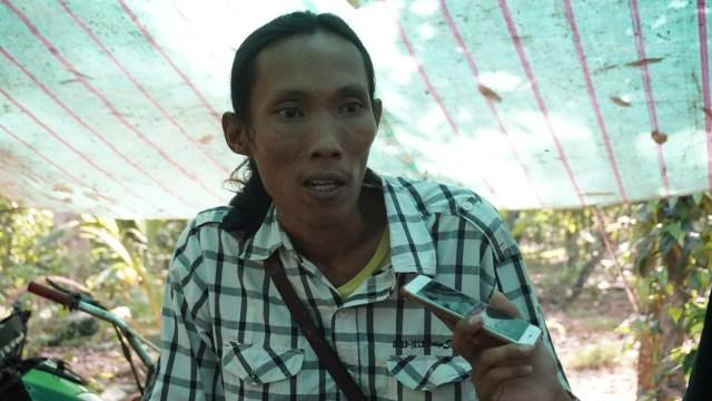 Wisata Durian Lampung Selatan: Bayar Rp 60 Ribu, Makan Sepuasnya (1083014)