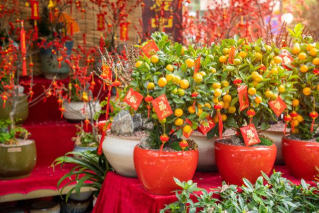 Rasakan dan Nikmati Kemeriahan Tahun Baru China Hanya di Singapura (34565)
