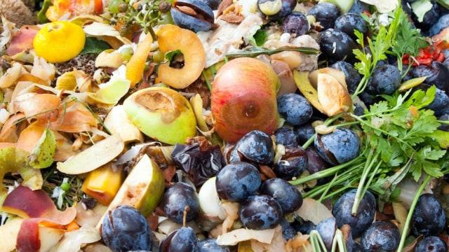 5 Sampah Dapur yang Bisa Dijadikan Pupuk Tanaman (1)