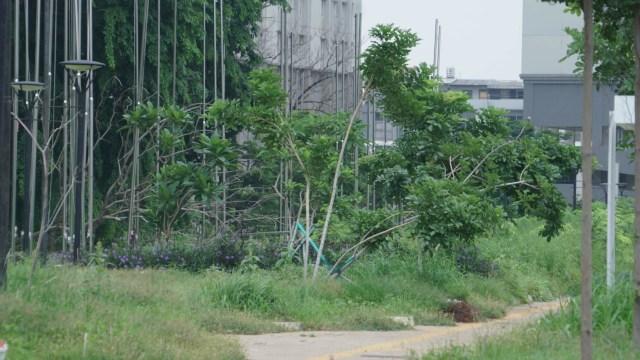 Foto: Lengangnya Wisma Atlet Kemayoran (69521)