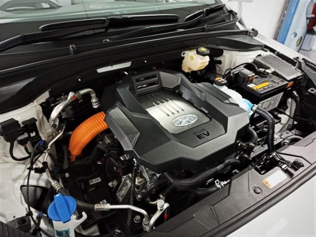 Bedah Spesifikasi Mobil Listrik Hyundai Ioniq untuk Pasar Indonesia (283795)