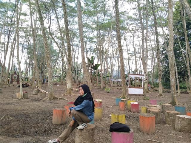 Menikmati Kesejukan Hutan Albasia, Wisata Alam di Kubu Raya, Kalbar (65165)