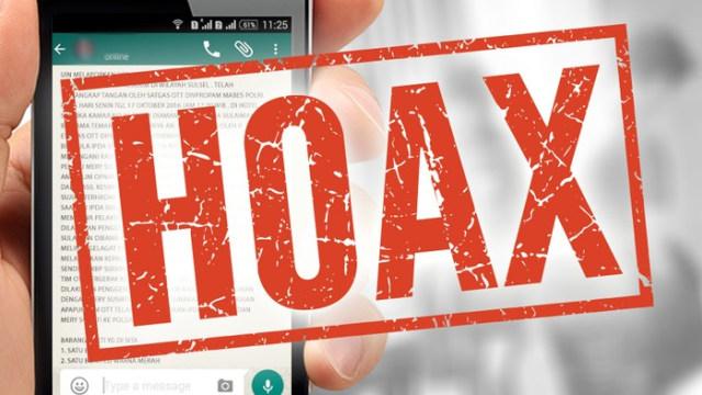 hoax cover.jpg