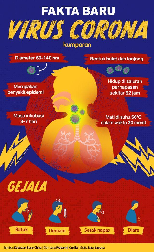 Infografik Fakta Baru Virus Corona