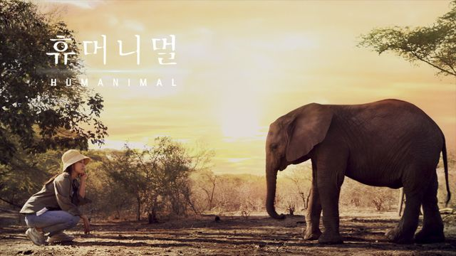 Cerita Park Shin Hye dan Kim Woo Bin Usai Mengikuti Acara 'Humanimal' (838102)
