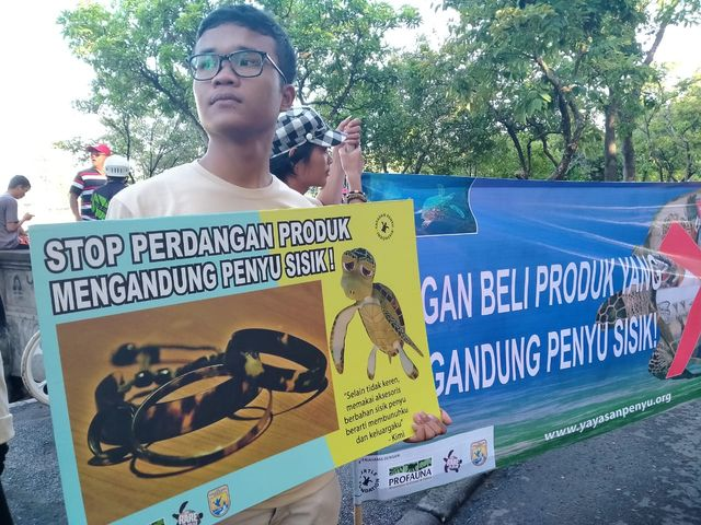 Lestarikan Penyu, Profauna Kampanye 'Keren Tanpa Sisik' (25889)