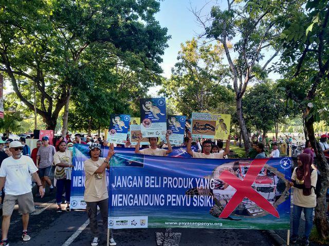 Lestarikan Penyu, Profauna Kampanye 'Keren Tanpa Sisik' (85)