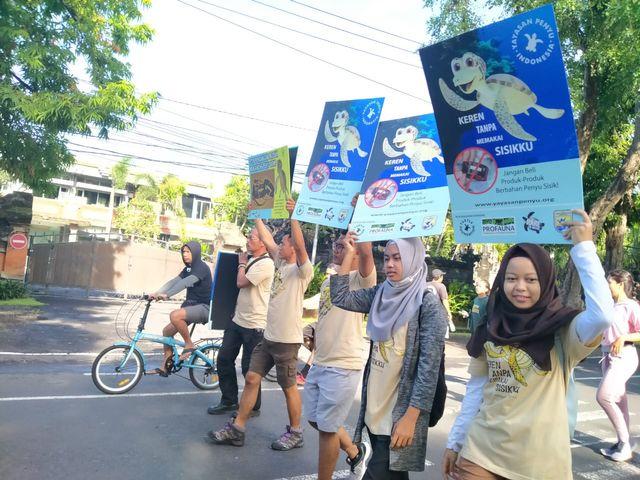Lestarikan Penyu, Profauna Kampanye 'Keren Tanpa Sisik' (25891)