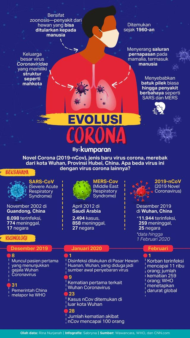 Infografik  LIPSUS VIRUS CORONA- Evolusi Virus Corona