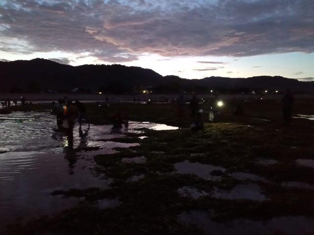 Keseruan Wau Mbenggo, Kegiatan Bau Nyale Ala Masyarakat Dompu, NTB (20600)