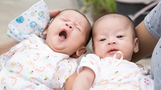 5 Fakta Tentang Anak Kembar Identik (465280)