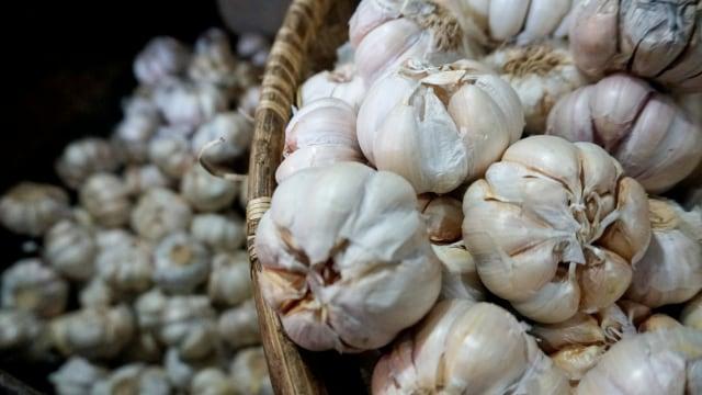 Makan Bawang Putih Sampai Minum Teh 5 Cara Meningkatkan Daya Tahan Tubuh Kumparan Com