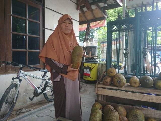 Cempedak, Buah Hutan yang Sekilas Mirip Nangka Rasa Mirip Durian (2)